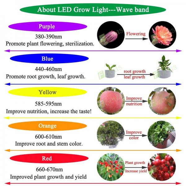 3W High Power Full Spectrum Led Chip 380nm-840nm 300mA-700mA Plant Grow Light