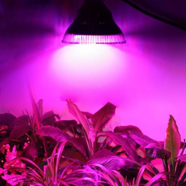 24 Watt LED 24 SMD Plantlight Grow E27 Growlight Full Spectrum 24W