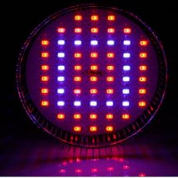 58W LED Grow Light Pflanzen Lampe Licht E27 Epistar Hydrokultur PAR38 Full Spectrum